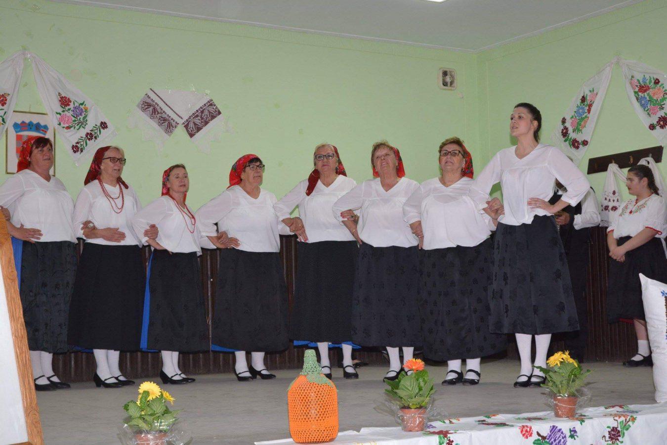 Folklorni susreti u Otrovancu (11)