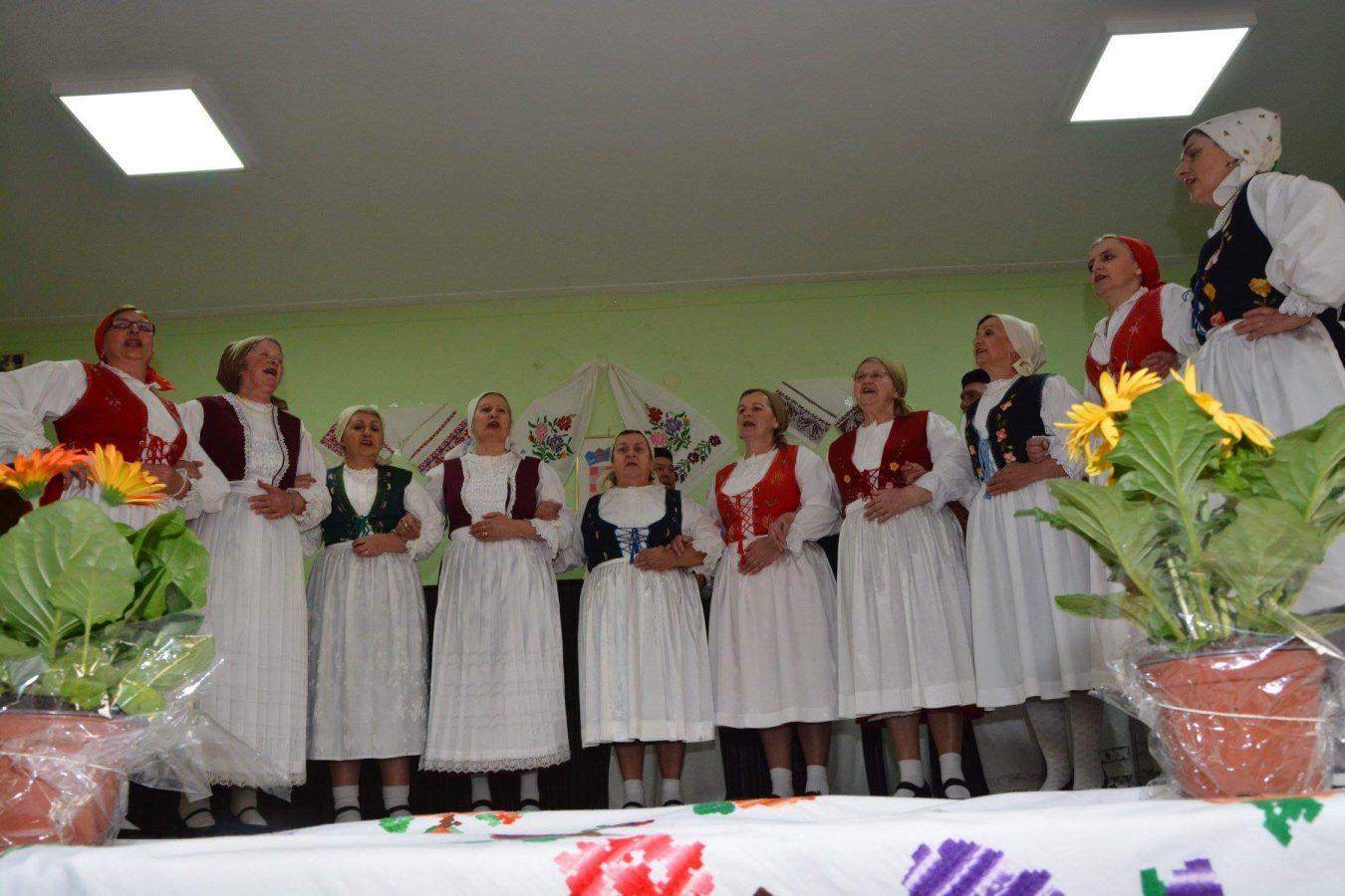Folklorni susreti u Otrovancu (17)