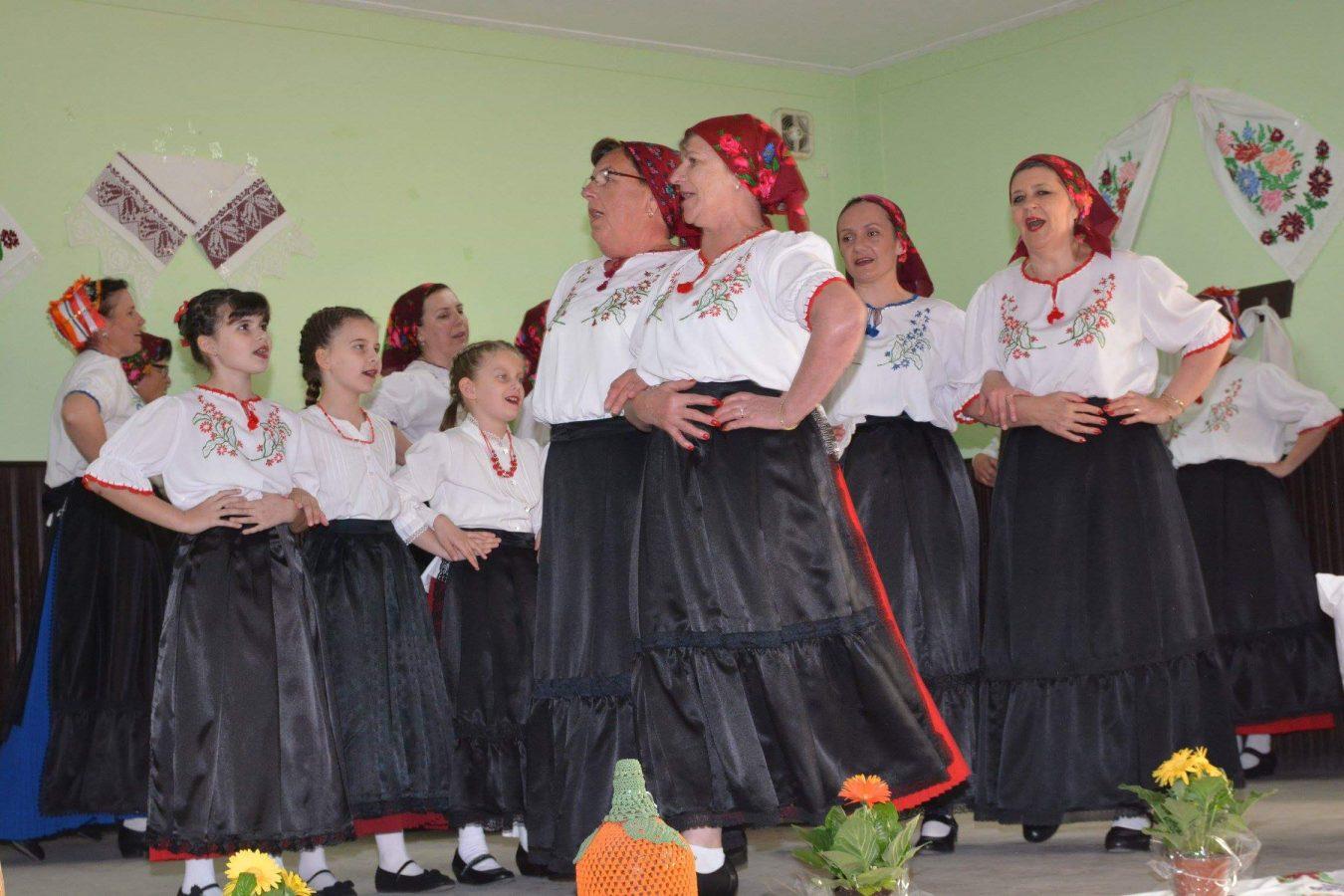 Folklorni susreti u Otrovancu (19)