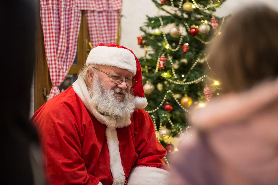 Djed Mraz (15)