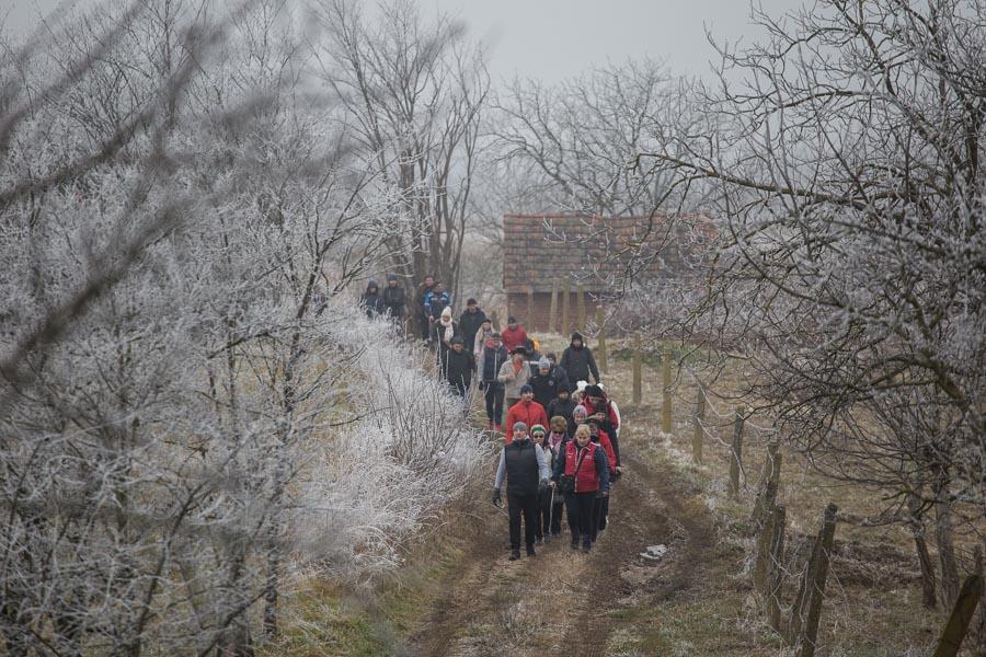 vincekovo walk&run (14)