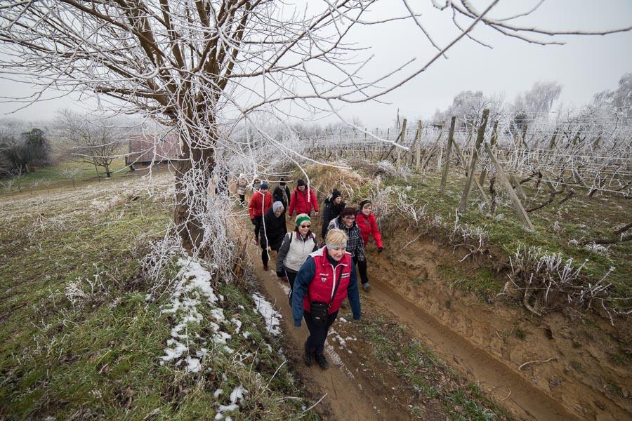 vincekovo walk&run (15)
