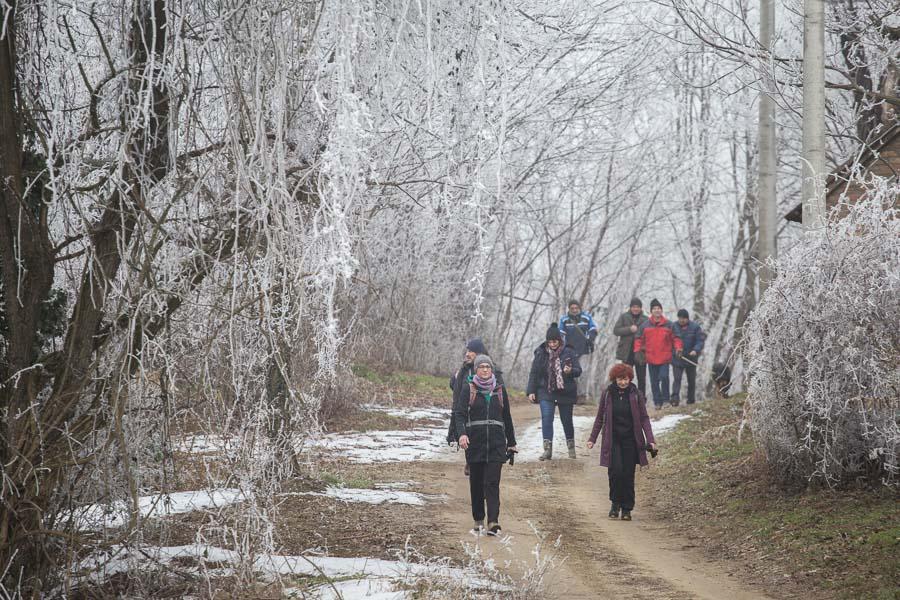 vincekovo walk&run (21)